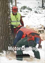 Boken Motorsågning